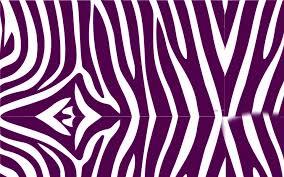 zebra print wallpaper hd wallpaper wiki