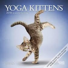 Grumpy Cat Mini Wall Calendar - yoga kittens 2018 mini 7 x 7 inch wall calendar animals humor kitten