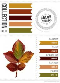 233 best color palettes images on pinterest color combos color