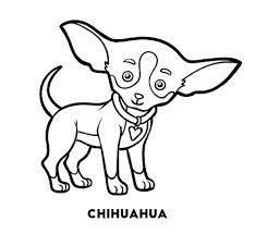 Coloriages Chihuahua Chihuahua Hills 2 S A Chihuahua Coloriage