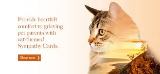 veterinary sympathy cards smartpractice veterinary