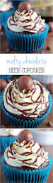 beer cupcakes 1547 best craft beer and cupcakes shared board images on
