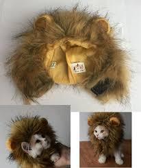 Dog Halloween Costume Lion Mane 25 Dog Lion Mane Ideas Dog Lion Costume