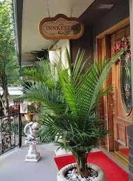 Bed And Breakfast In Arkansas Tradewinds Bed And Breakfast Lodging In Eureka Springs Arkansas
