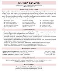 Resume Summary Ideas Chic Resume Summary Examples For Customer Service 2 25 Best Ideas