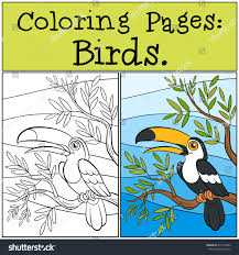 coloring pages birds little cute toucan stock vector 419713582