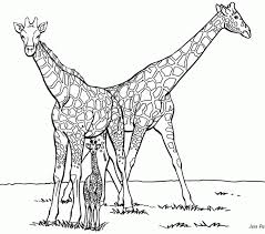 Giraffe Coloring Pages Giraffe Coloring Pages Coloring Beach Screensavers Com by Giraffe Coloring Pages