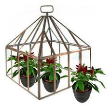 our miniature greenhouse terrarium kit is a great start for