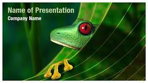 tropical rainforest powerpoint template rainforest tree frog