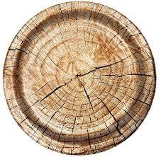 paper plates cut timber lumberjack 7 paper plates 2 99 buffalo plaid lumberjack
