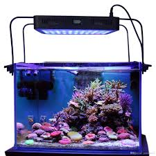 led aquarium light with timer best aurora 165w reef led timer light with bracket legs sps lps led