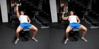 Bench Exercises With Dumbbells Incline One Arm Dumbbell Bench Press Weight Training Exercises 4 You
