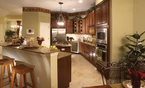kitchen hardwood floors with light green walls impressive home design