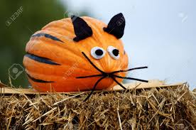 pumpkin face stock photos royalty free pumpkin face images and