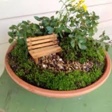 Dish Garden Ideas Dish Gardens Designs Home Design Ideas