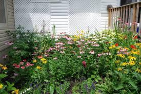 idea garden maitland garden of hope