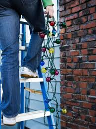 how to hang lights indoor trees inside home