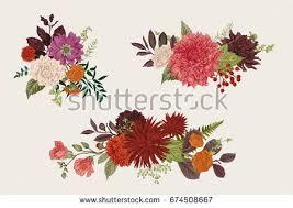 floral bouquets summer autumn set floral bouquets dahlias stock vector 674508667