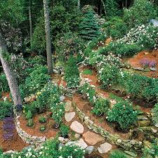 Steep Hill Backyard Ideas with Guide To Scaping This Is Ideas For Planting On A Hill Steep Hill