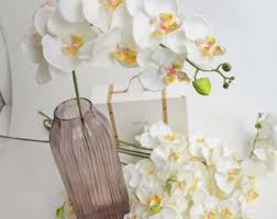 white orchids white orchids etsy