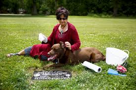 newly opened springfield pet cemetery reflects industry trends