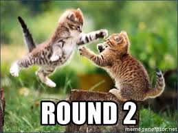 Cat Fight Meme - round 2 cat fight fight fight meme generator