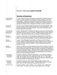 Show Me A Resume Sample by Examples Of Resumes How Creating An Infographic Resume Helped Me