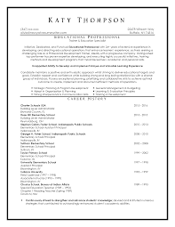 education resume examples top resume samples executive format resumes by new york resume education resume sample