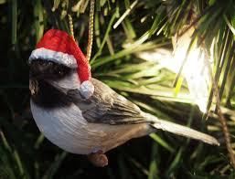 our wreath bird brains tales