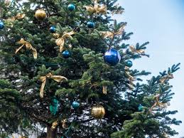 tree with blue and gold ornaments stock photo image