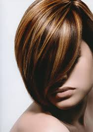 hair color pics highlights multi 17 best ideas about hair colors on pinterest spring hair colors