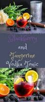 vodka tonic recipe blackberry and tangerine vodka tonic recipe vodka tonic