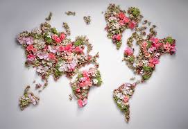 world flowers world map wallpapers hd desktop and mobile