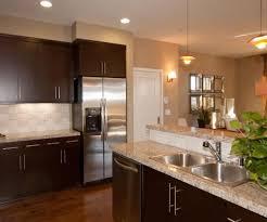 Purple Kitchen Cabinets Modern Kitchen Color Schemes Modern Kitchen Colours Interior Design