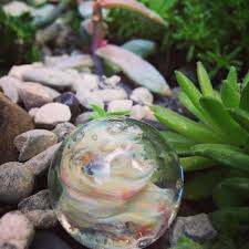 Succulent Rock Garden by Nature Archives Go Forth Culture