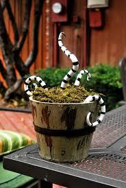 halloween scary snake basket always the holidays
