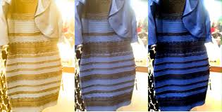 the dress color perception and what is real ask an entomologist