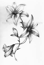 Lily Flowers Lily Tattoo That I U0027m Considering I Am Thinking Only About Two