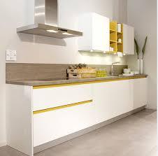 Painting High Gloss Kitchen Cabinets Paint Kitchen Cabinets Gloss U2013 Quicua Com