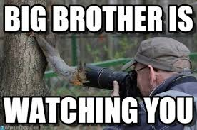 Watching You Meme - big brother is jehovas witness squirrel meme on memegen