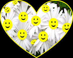 Smiley Flowers - white daisies free illustrations on pixabay