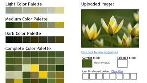 color pattern generator 45 free and effective color palette and color scheme generators