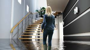 basement flooding cleanup and repair services in va md and dc