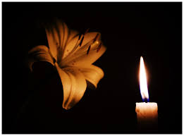 candle lights lilly by baardbekbal on deviantart