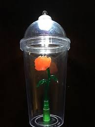 beauty and the beast light up rose best deals on disneyland beauty and the beast rose cup