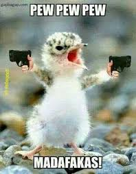 Angry Baby Meme - angry baby chick memes memes pics 2018