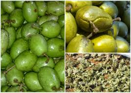 Indian Food Olives From Spain Blending Flavours Jalpai Achar Indian Olive Pickle
