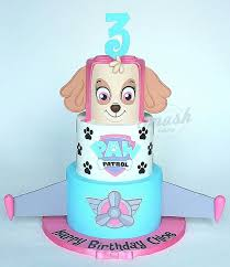cake ideas for girl ideas girl paw patrol cake and the 25 best paw