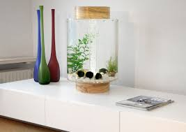 chic and creative aquariums for home view in gallery beautiful