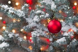 christmas tree with snow snow covered christmas tree photos creative market